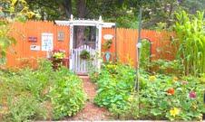 jamie's garden 1